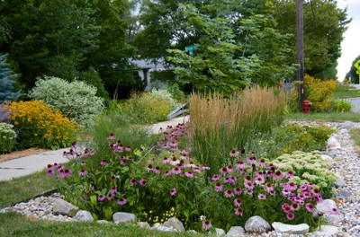 An example Rain garden in Washtenaw County.