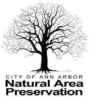 NAP logo.jpg