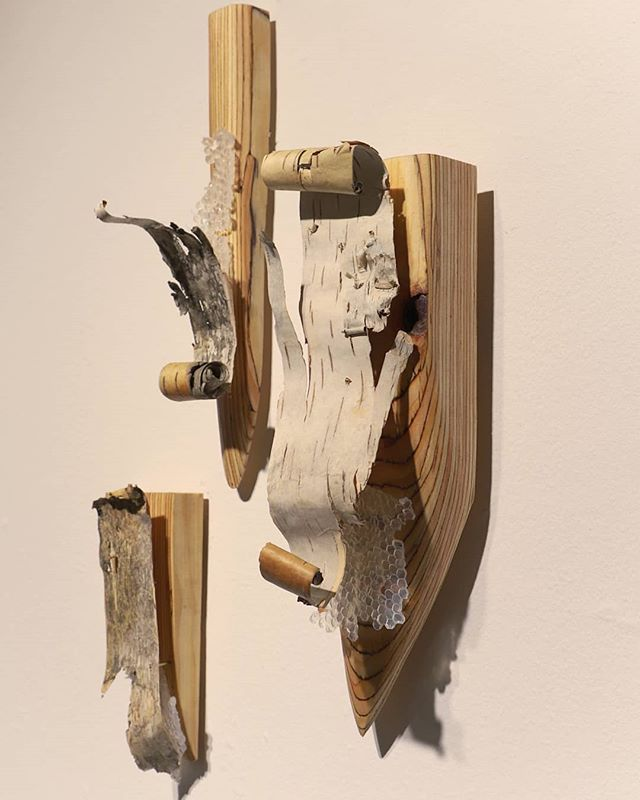 Last week to see Sanctuary at the Ann Arbor Art Center! @a2artcenter Work by Elize Jekabson @smelize photo by Cathy Jacobs @cathyjacobs_art Thank you, Cathy! . . . #ypsiartist #ypsialloy #a2artcenter #annarborartcenter #sanctuary #elizejekabson #birch #sculpture #mixedmedia #art