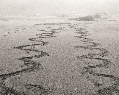 line in the sand.jpg