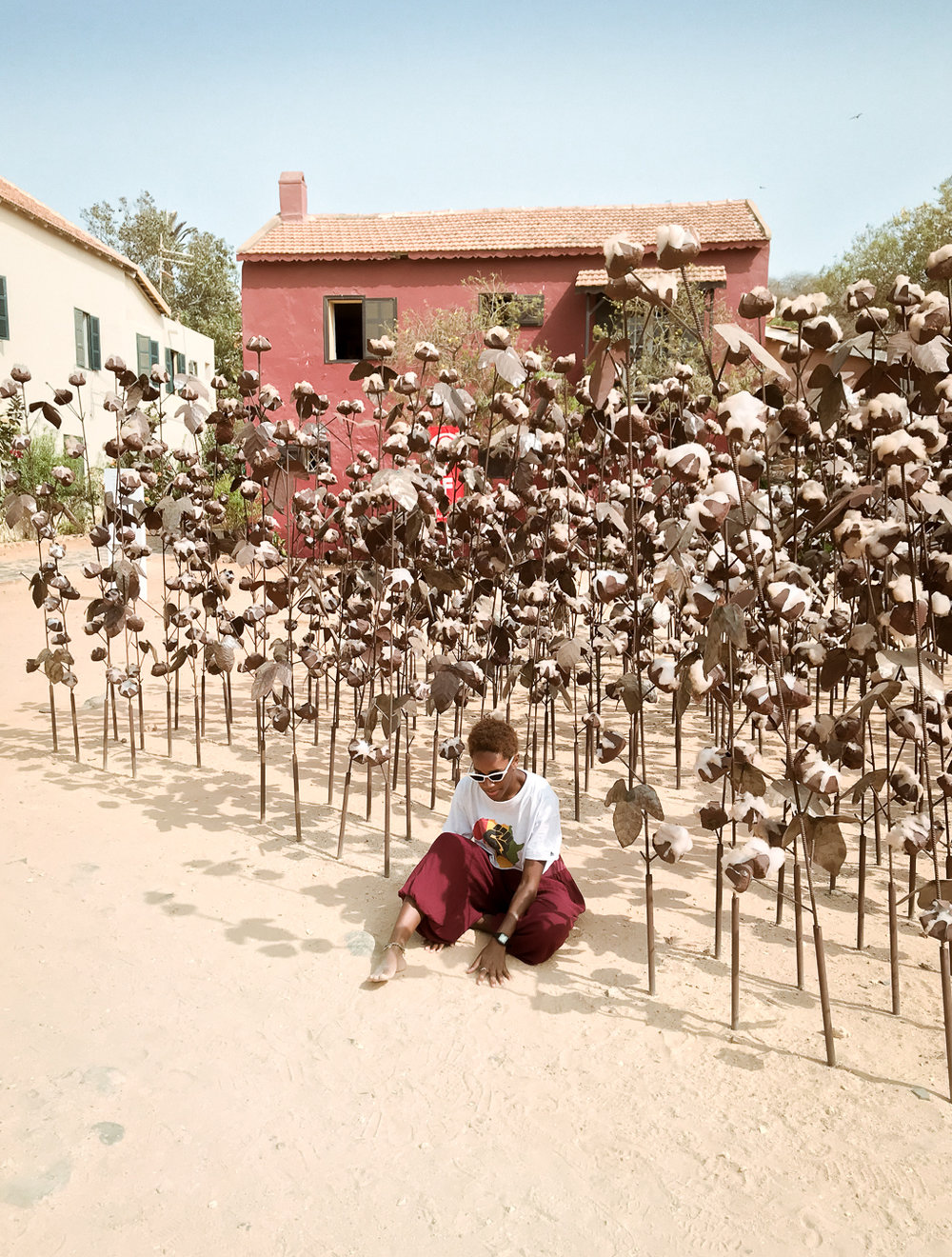 Dak'art biennale 2018 cotton pickin goree island.jpg