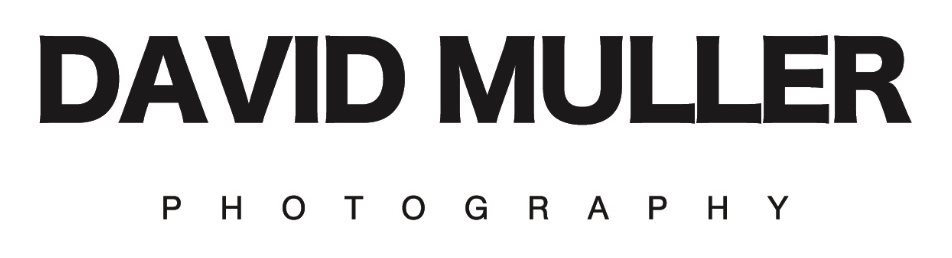 David Muller Headshot Photographer
