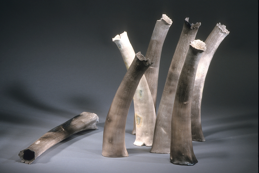 "Witness ,    1999    clay, kiln- and pit-fired    variable, tallest 22"" h."