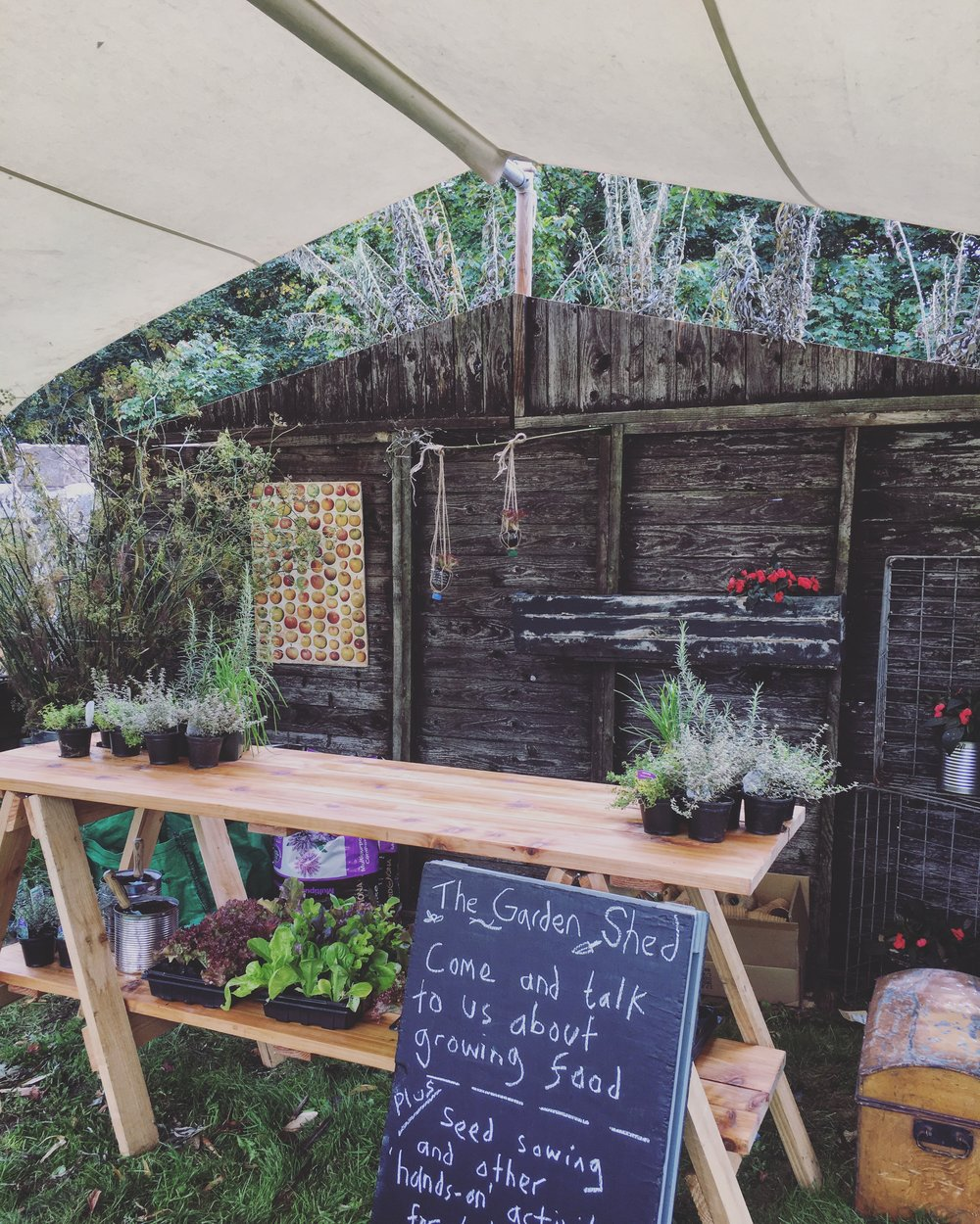 Abergavenny Food Festival: The Garden Shed - SEPTEMBER 2017As part of a weekend of food inspired programming for the Abergavenny Food Festival, I was invited to host the Garden Shed. The Garden Shed was a space dedicated to talking about growing and to host practical workshops and hands-on activities for children.http://www.abergavennyfoodfestival.com/