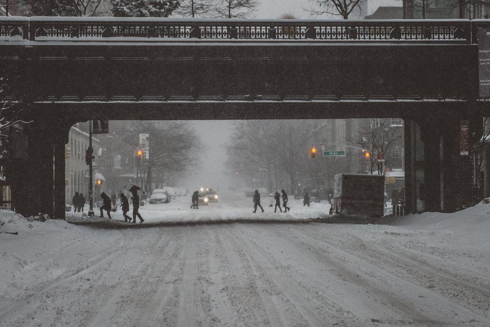 Snowstorm_DSC_1072.jpg