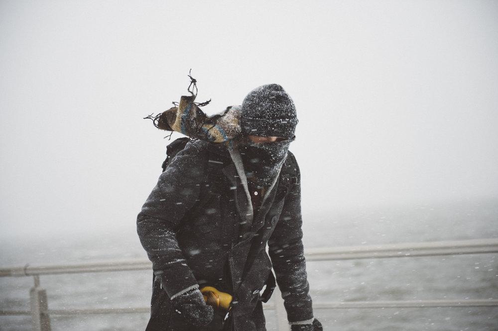 Snowstorm_DSC_1038.jpg