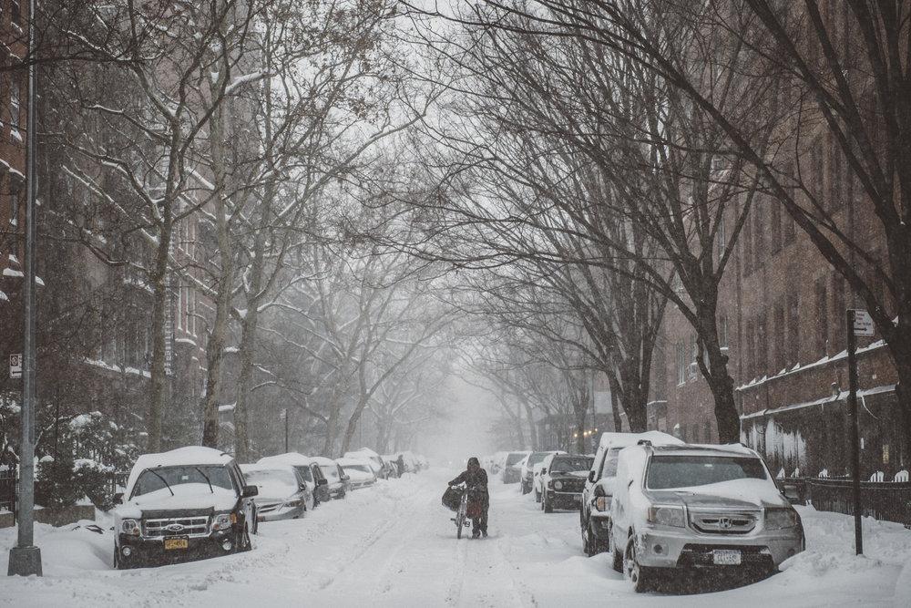 Snowstorm_DSC_1114.jpg