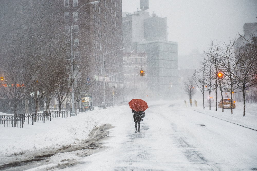Snowstorm_DSC_1308.jpg