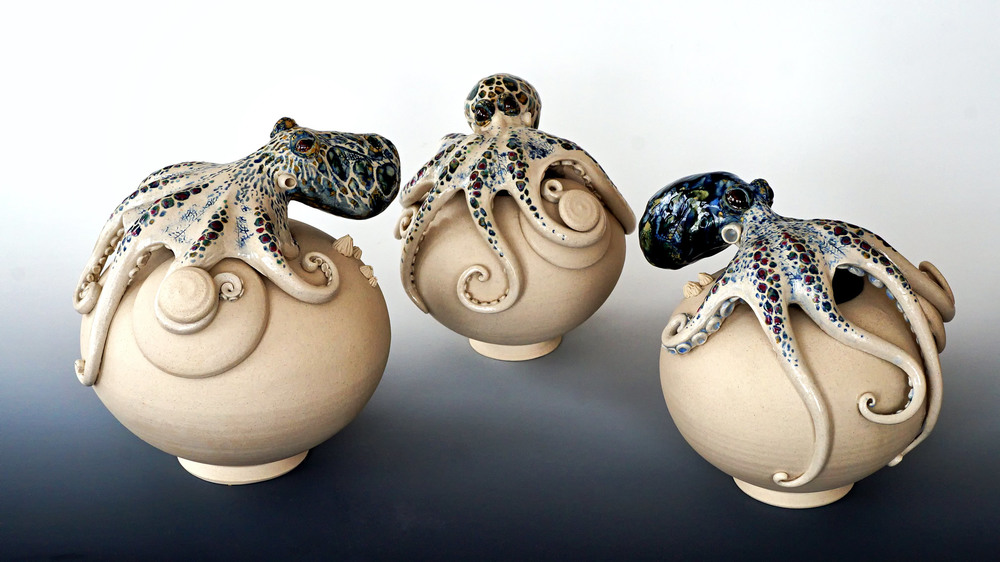 Octopuses that found a home