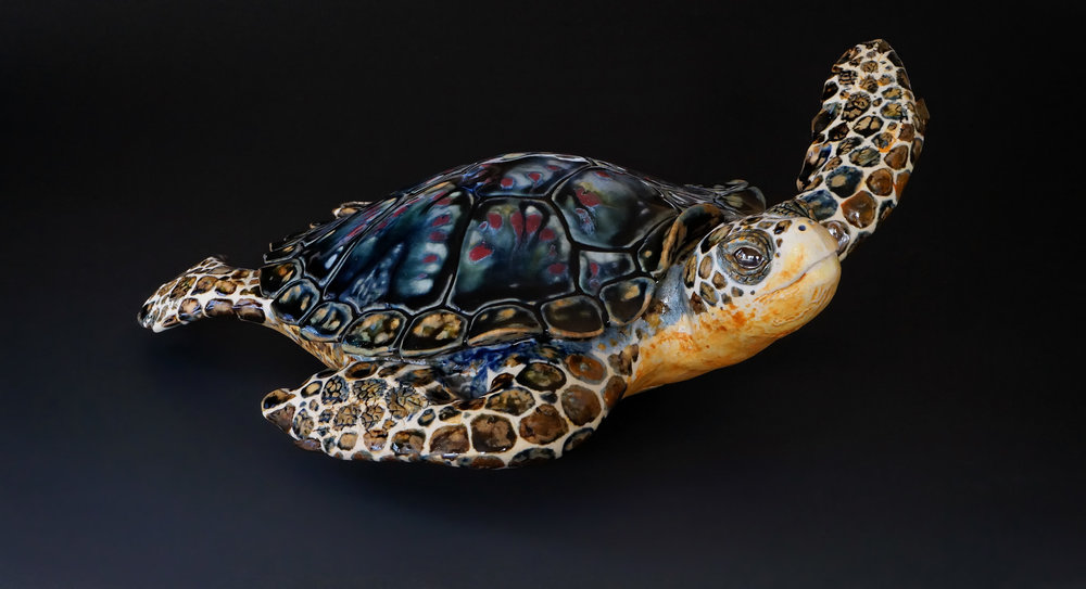 """Melissa"", Small Table Turtle, 13 inches long."