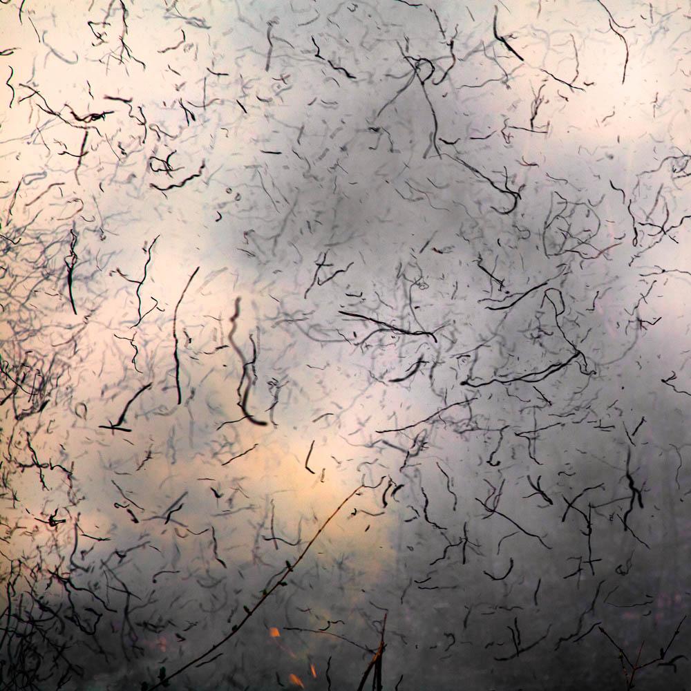 untitled-38.jpg