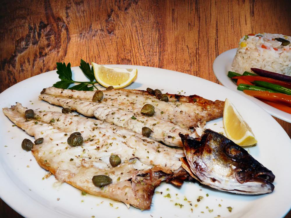 Mediterranean SeaBass