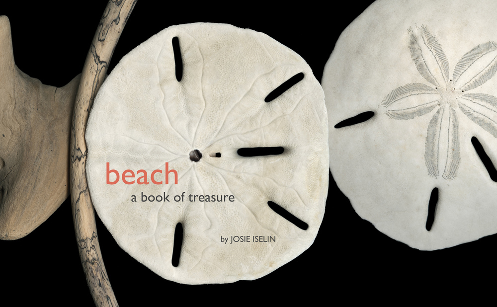 Beach: A Book of Treasure