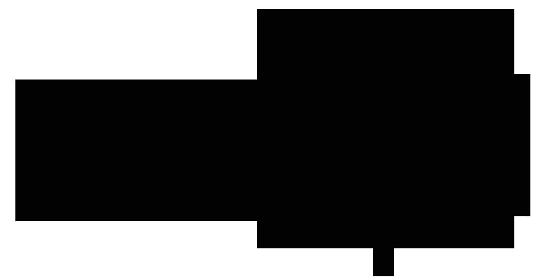 logo_template_triumph.png