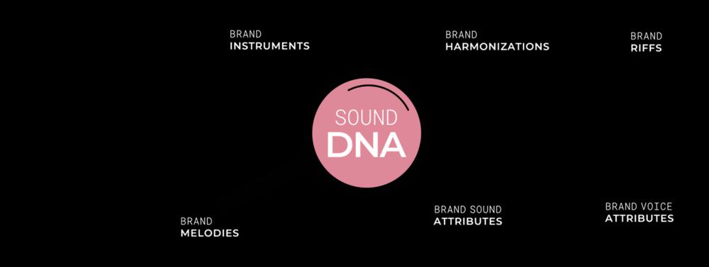 BBVA SOUND DNA - The metaphor of