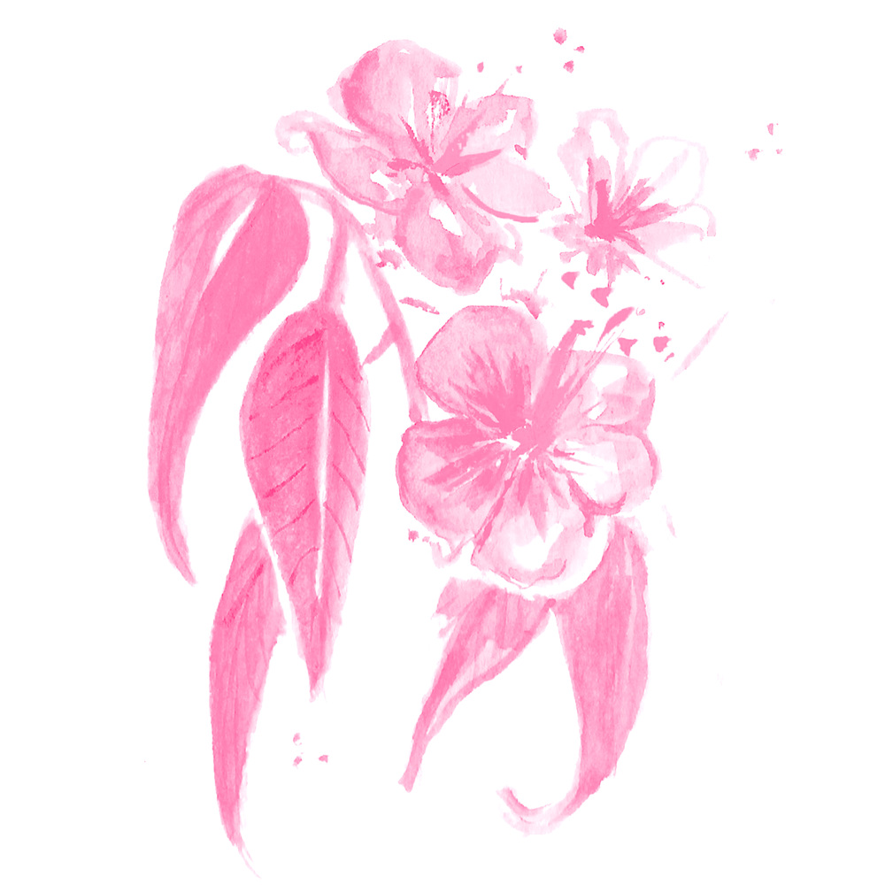 TropicalFlower_AlexPerlin_Pink.jpg