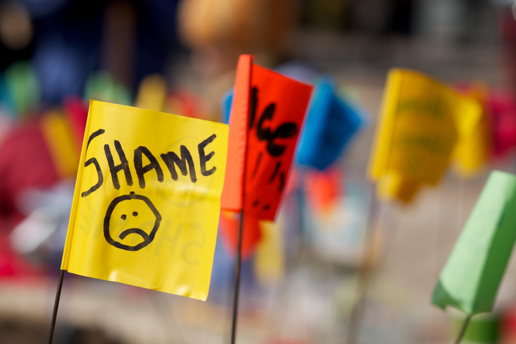 Shame Flag on Flickr