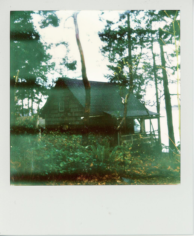 DRiftqwood Polaroid.jpg