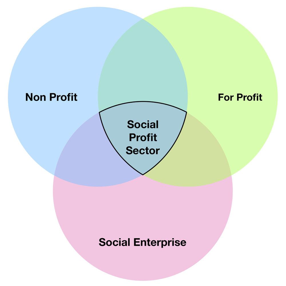 Social Profit Venn Diagram.jpg