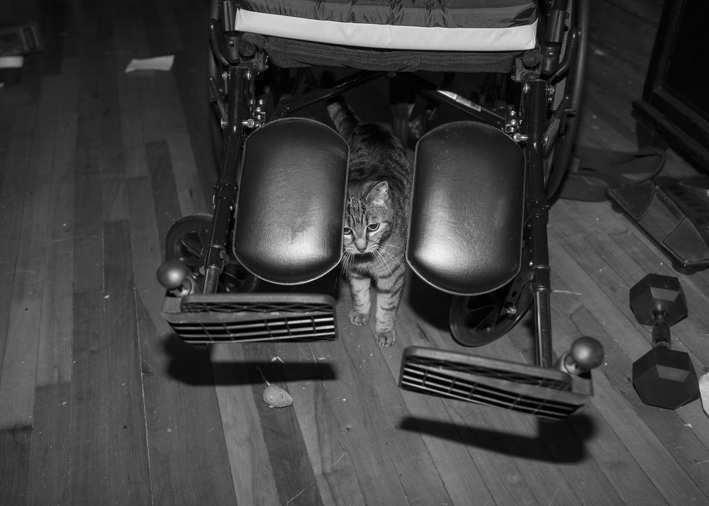 Portrait of Sabrina with my chair in the Queens house (1).jpg