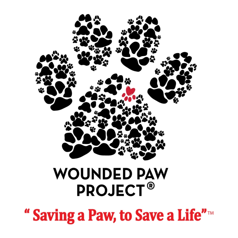 wounded paw square.jpg