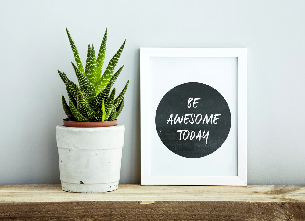 white frame  BE AWESOME TODAY with succulent in diy concrete pot