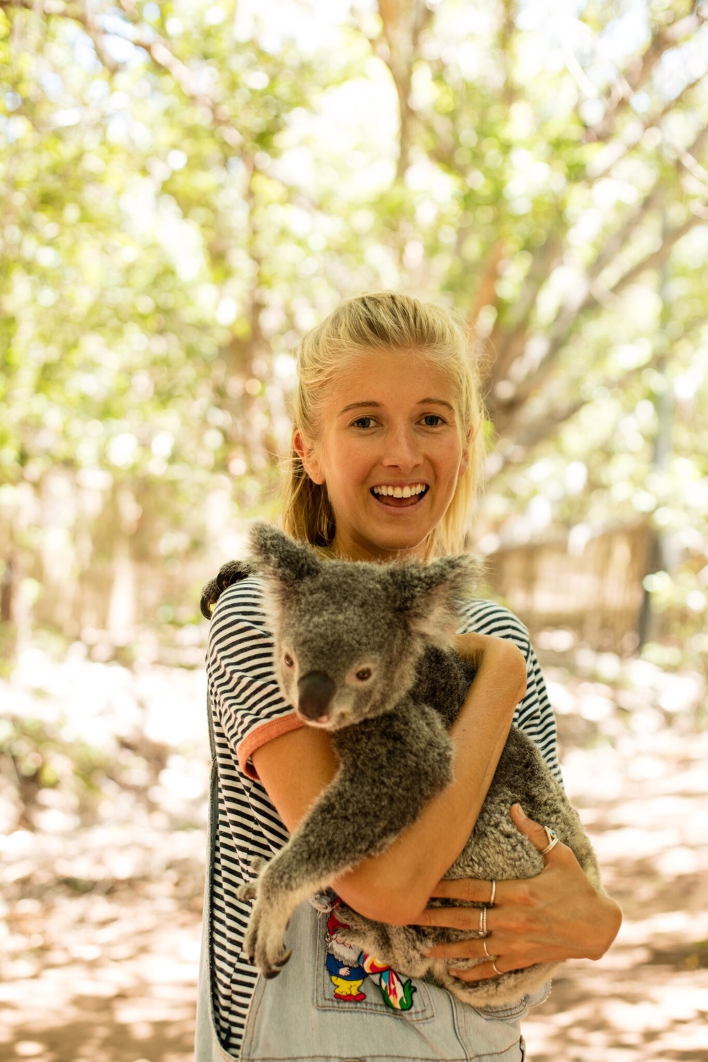 Cuddles with a Koala at Bungalow Bay Backpackers Koala Sanctuary