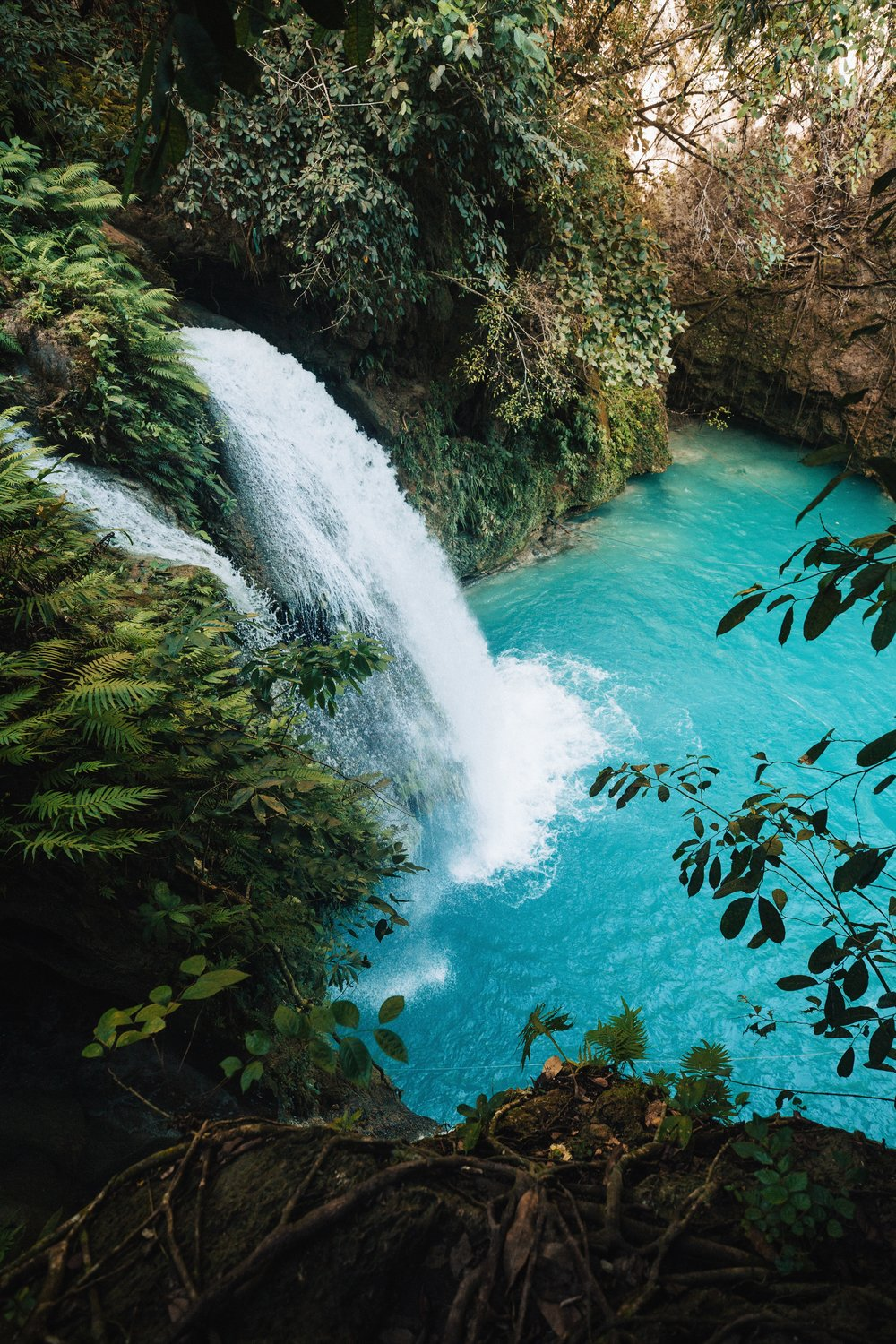 Kawasan Falls from the top