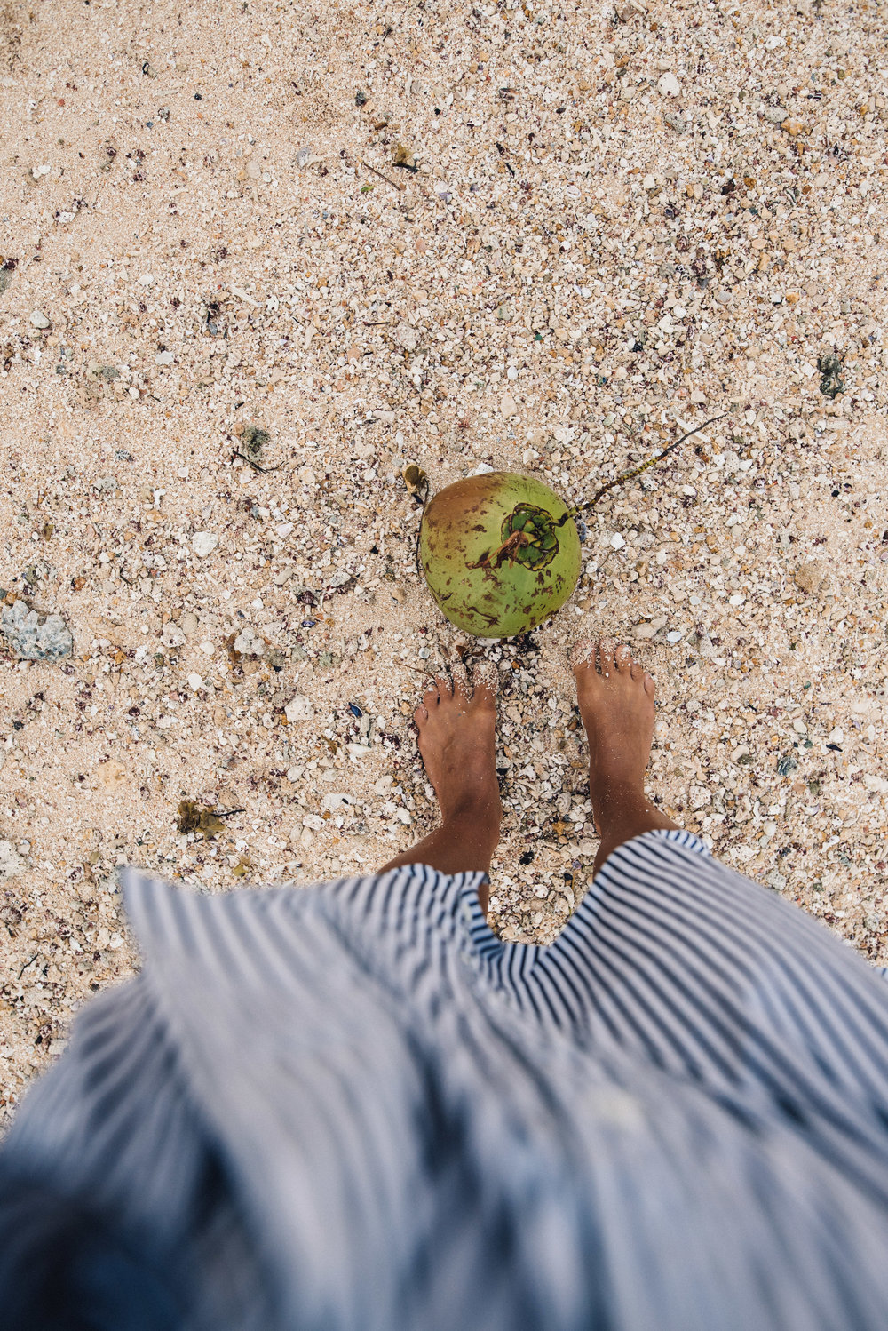 Coconuts on the beaches of Siargao