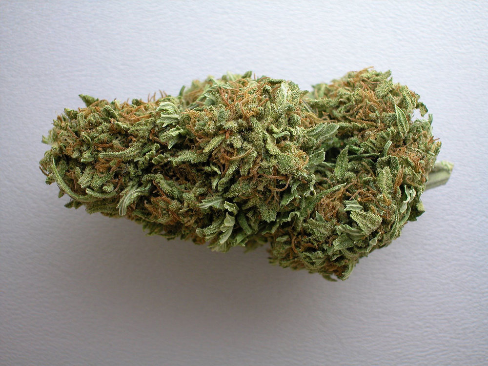 Cannabis flower which is used to smoke or make medicines