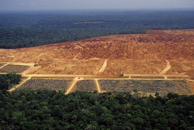 deforestationbrazil.jpg