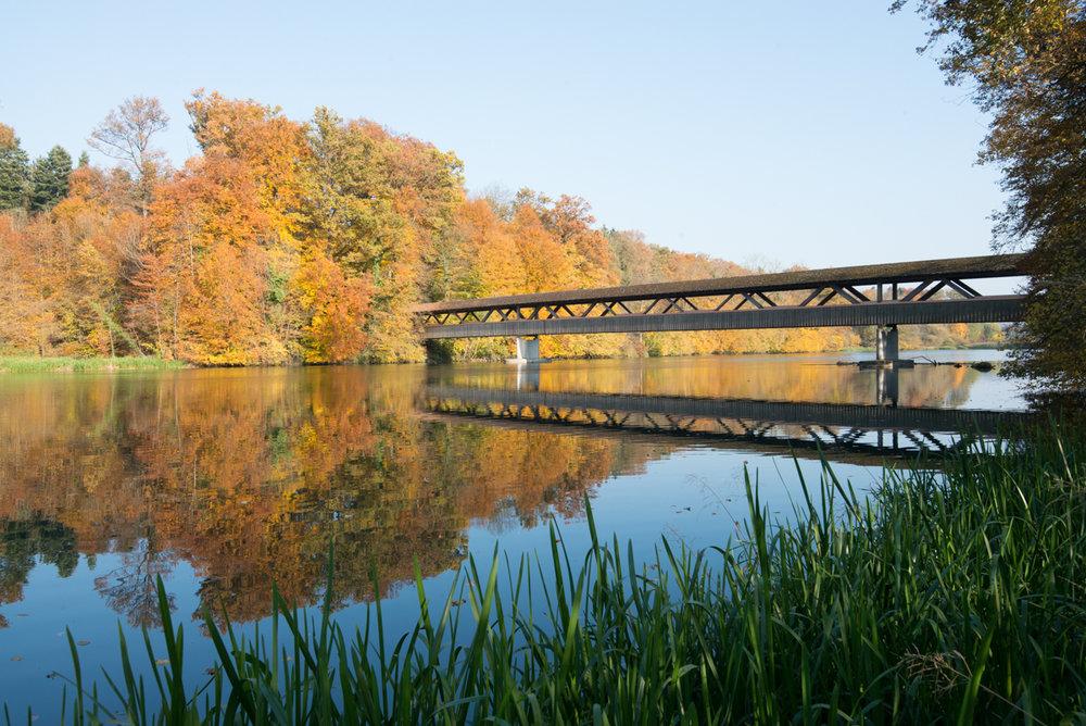 Bremgarten-3.jpg