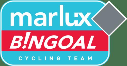 Marlux-Bingoal-logo