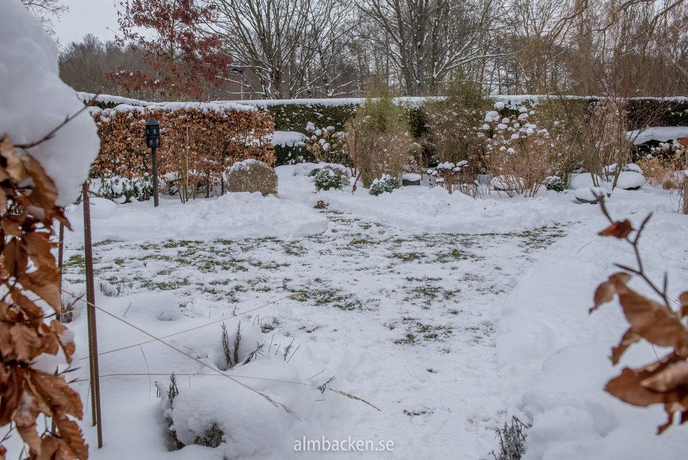 Rabatter-i-snö-6.jpg