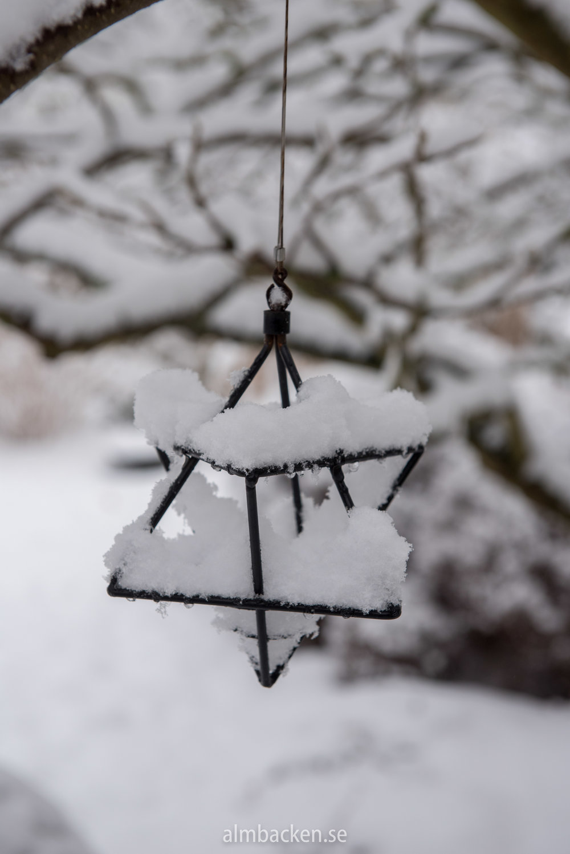 Wintergarden-3.jpg