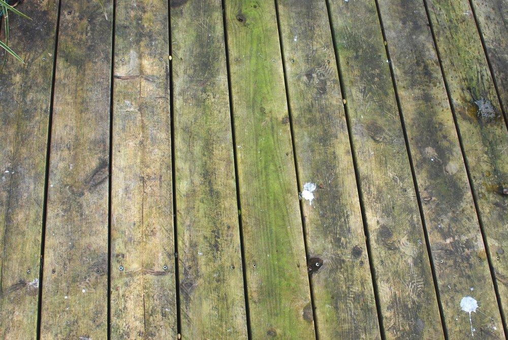 trädäck-alger-rengörning.jpg
