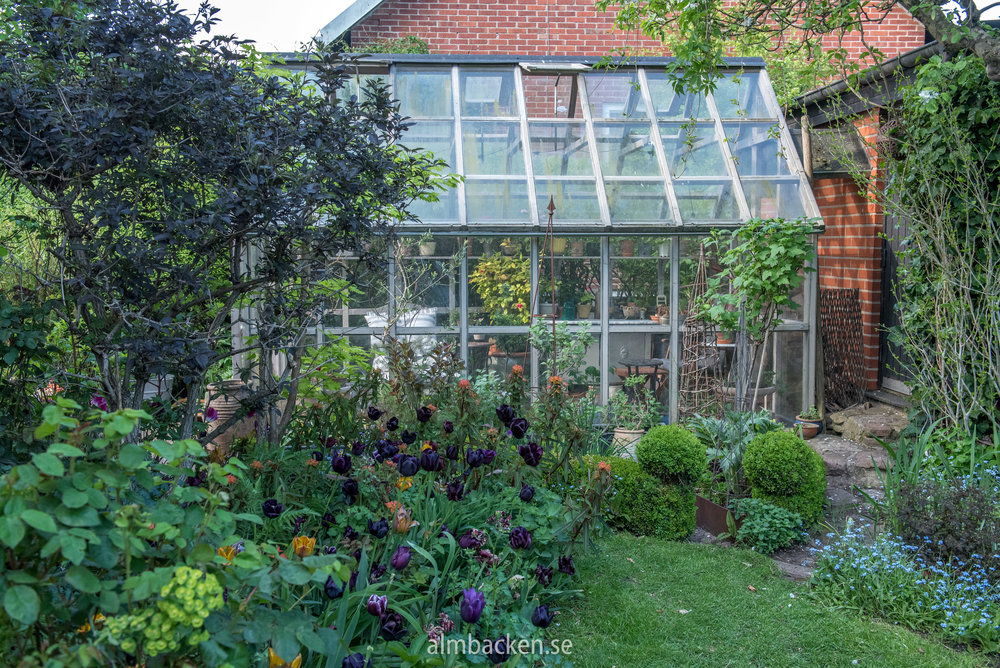Helenas trädgård-10.jpg