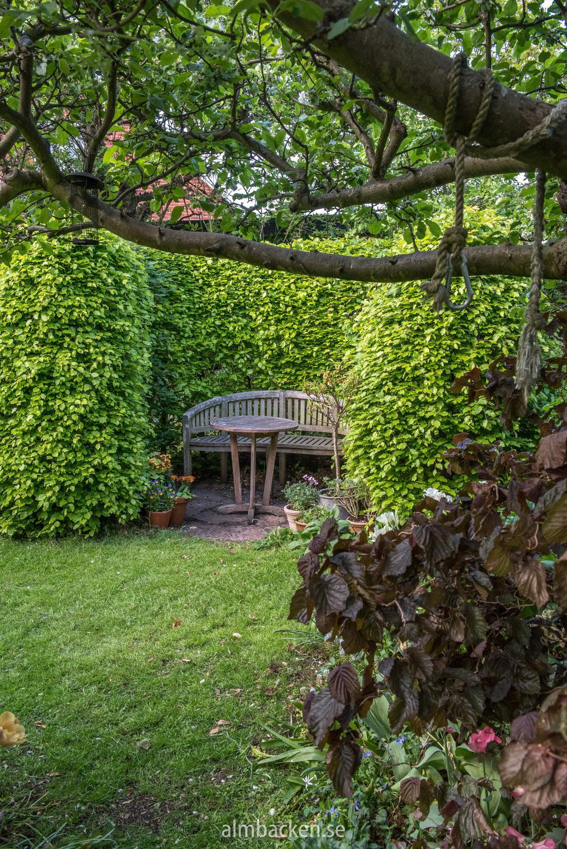 Helenas trädgård-8.jpg