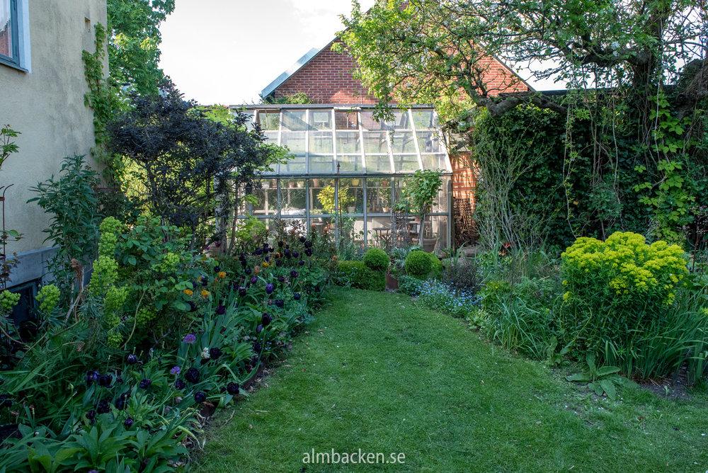 Helenas trädgård-2.jpg