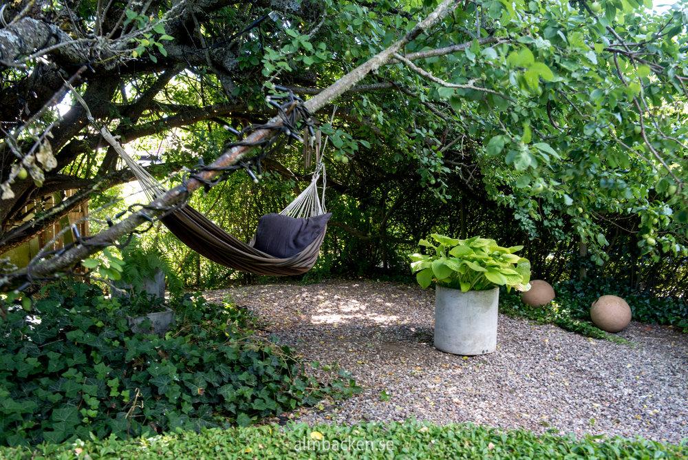 Charltottas trädgård-3.jpg