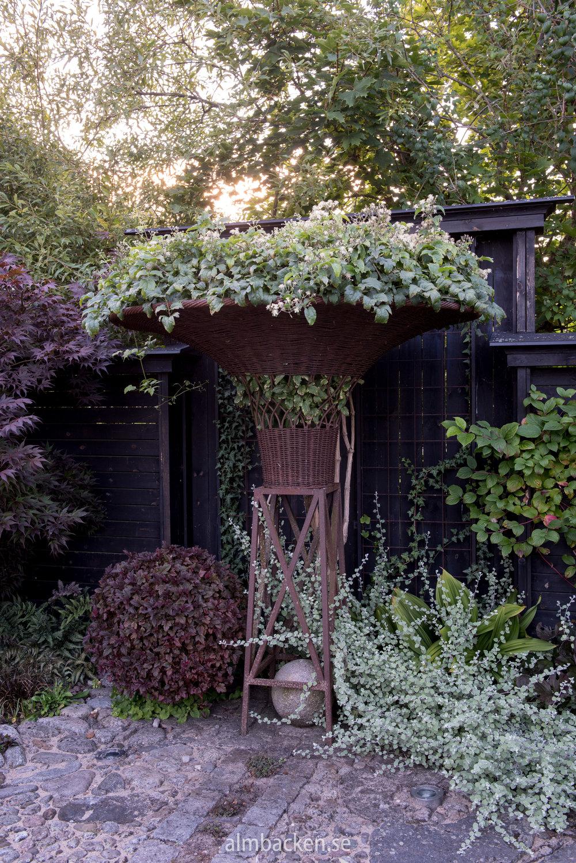 Kruka på piedestal med klematis. Specialgjord till trädgården av den kände Tage Andersen.