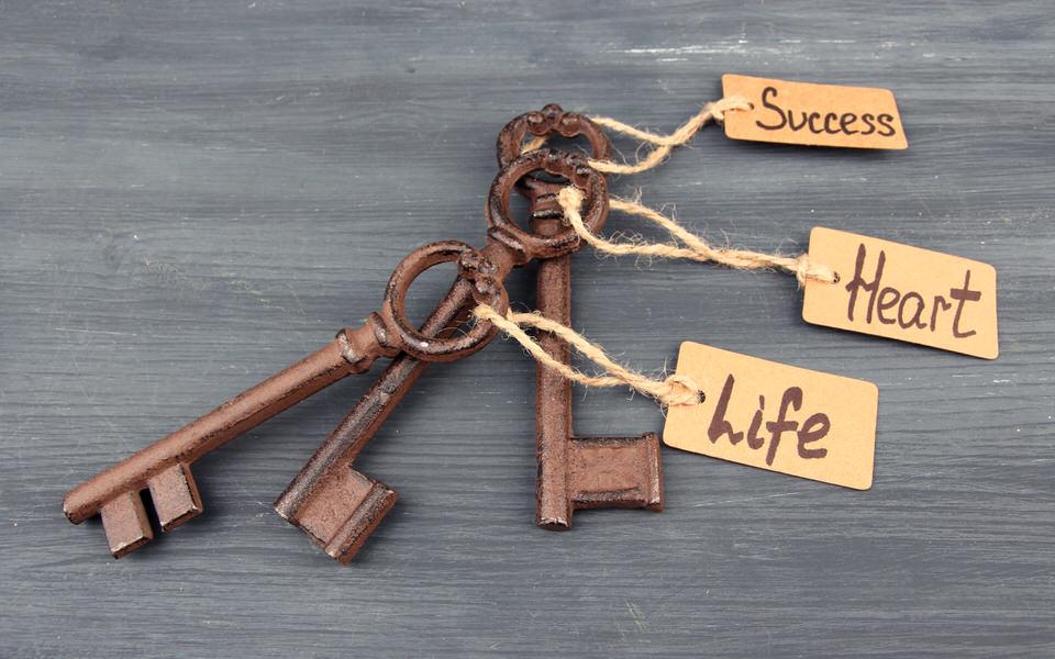 Key to Success with My Alcomy: Work, Love, Life