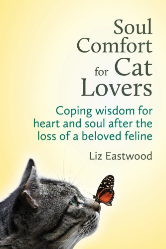 SOUL COMFORT FOR CAT LOVERS.jpg