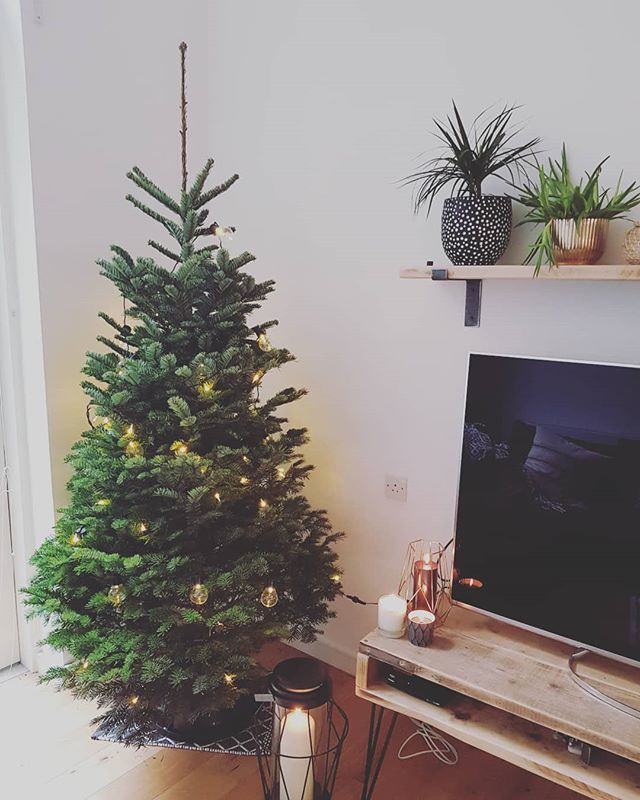 Gonna throw this out there and say this is one of the most perfect 7ft Nordmann you will find anywhere on this planet 👌👍🌲🌍 Grown by our pal Russ in Scotland. Hand selected by We Tree Kings. Installed into one of our long-standing customers homes this morning by a team of elves. Cheers Russ! Cheers Elves! What a belter!! 😍🌲 . . . . #realchristmastree #keepitreal #stokenewington #ukgrown #christmasdelivered #youbeauty #belter #perfectshape #whatscookingoodlookin