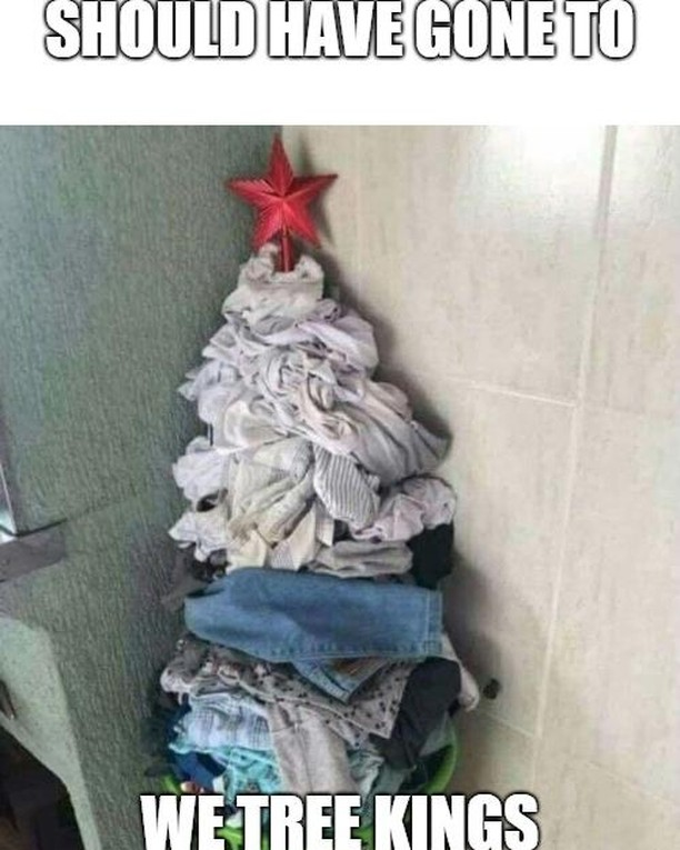 Phahahahahaa 😂 ... should have gone to We Tree Kings . . . . #realchristmastree #funnychristmas #christmas2018 #christmas #keepitreal #keepitfresh #laundtree