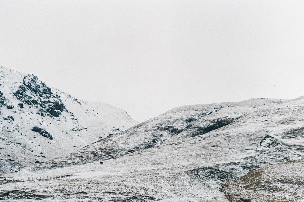 annadosenes-Travel Diary-Glacier-15.jpg