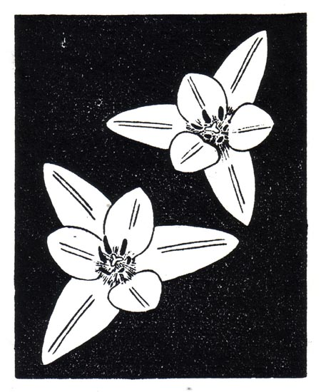 """April 28"" linocut; 4 x 5"" image size, 8 x 9"" paper size; printed on HP55 handmade laid rice paper; edition of 8; 2012; unframed"