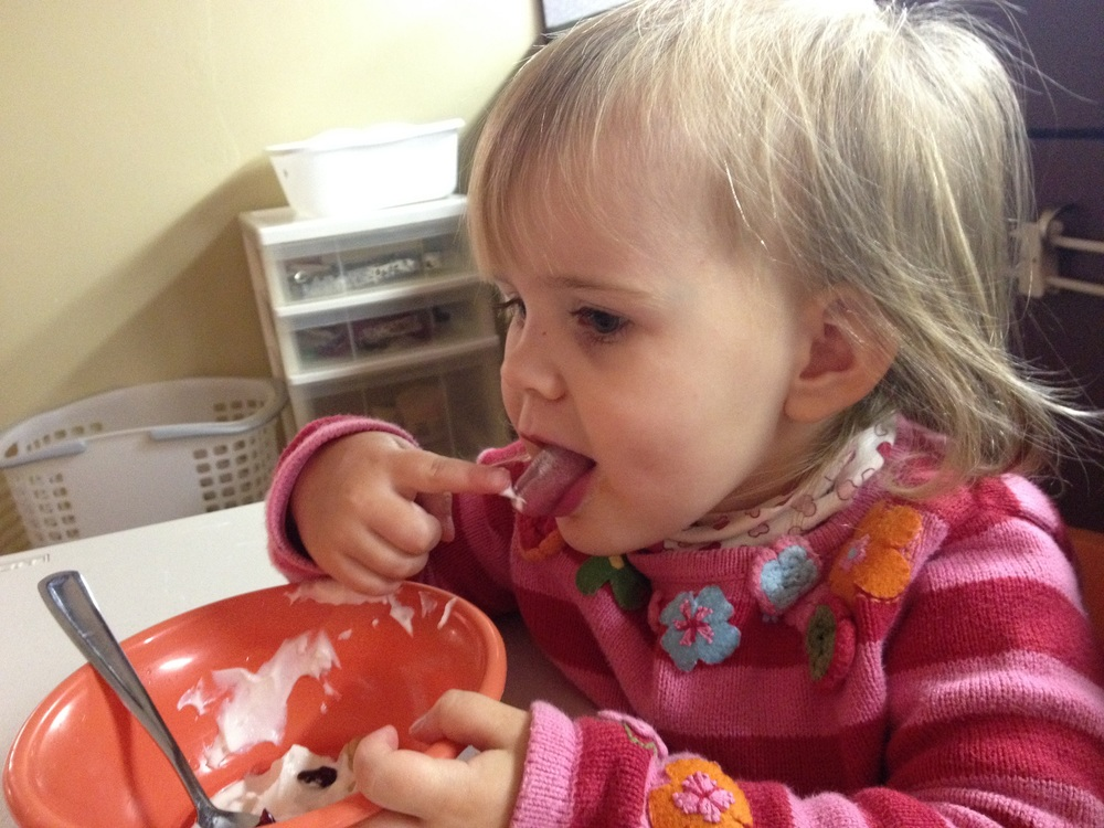 Greek yogurt is a little tricky for some students. While the flavor can be a little more sour than ordinary plain yogurt, many students enjoy the thicker texture when paired with fruit or oats.