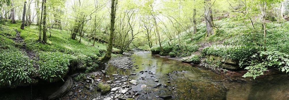 Sgithwen Brook - Trericket Mill, Wales