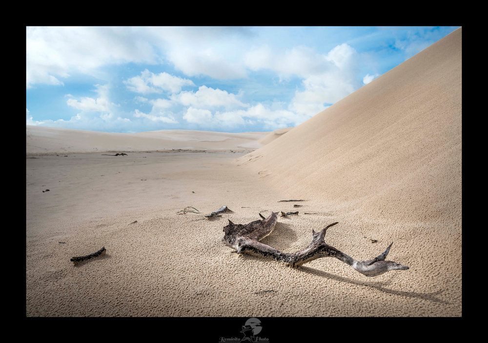 remicito photo, photo du jour, image du jour, photo of the day, death land, photographe français, french photographer, lençois maranhenses, photo voyage brésil, photographe de voyage, photographe de paysage, photo sable, photo dune, landscape photography, desert photo, idée déco, belle photo brésil